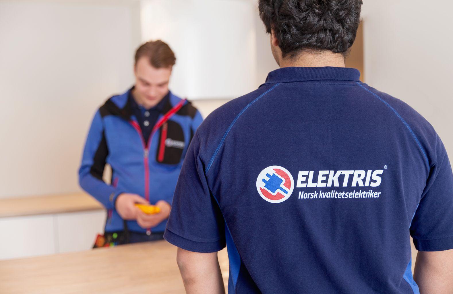Elektrikere fra Elektris